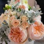 """Bouquet de aire silvestre de rosas David Austin """"Juliet"""" y """"Patience"""", rosa ramificada color melocotón, Fresia blanca y Hoja de Senecio."""