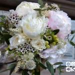 """Atado de peonías blancas y rosas inglesas David Austin """"Patience"""", astrantia, astilbe, flor de cera y eucalipto."""