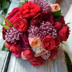 "Atado de rosa inglesa roja, Rosa inglesa David Austin ""Juliete"" y ""Darcey"" y asclepia fucsia."